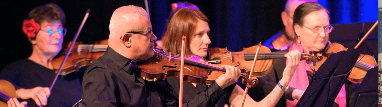 orchestre à cordes pour adultes Calmerata