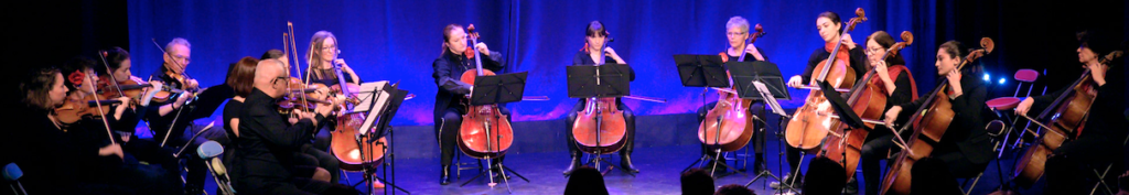 Musique classique orchestre cordes Calmerata ensemble