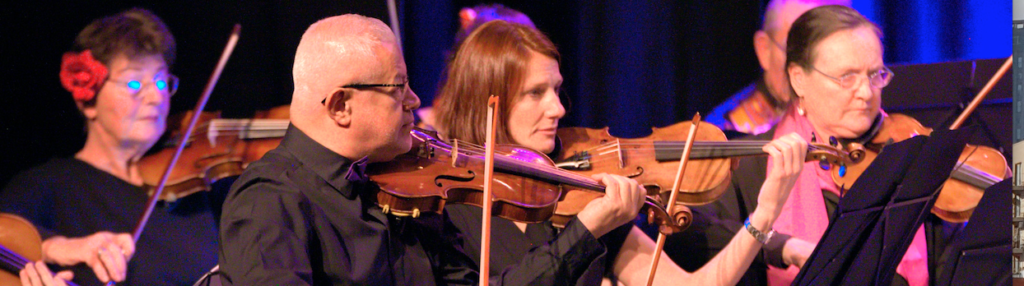 Musique classique orchestre cordes Calmerata violon concert calmerata